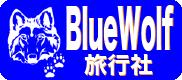 BlueWolf Travel